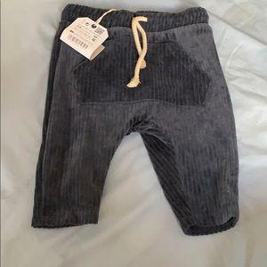 Valor pants
